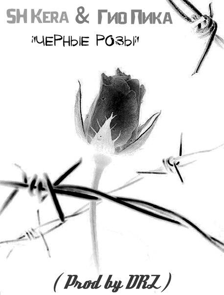 Чёрные розы гио пика текст песни