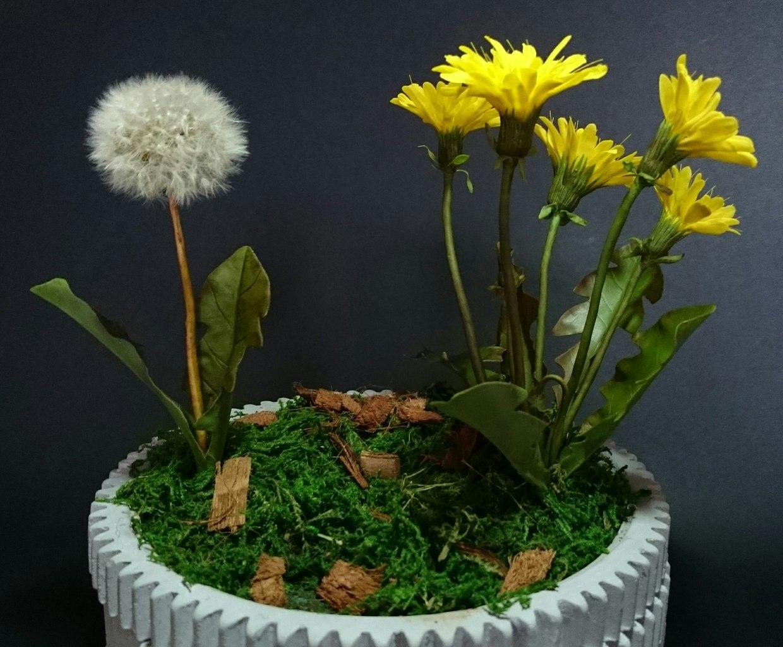 Ботаническая скульптура. Возрождение. Анна и Лариса Фёдоровы