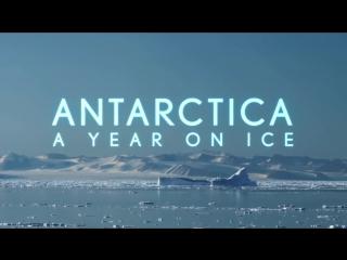 Антарктида. Год на льду / Antarctica. A Year on Ice  (Трейлер)