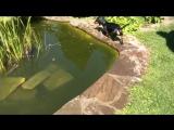Найке разрешили купаться