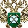Коми УФАС России