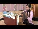 Светлана Копылова - Вышивальщица