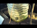 чистка инжектора лавром(опель омега А)