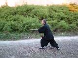 Тайцзицюань с мечом - 51 форма стиля Ян (Li Zhanying)