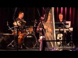 The Pink Panther - electric harp and big band
