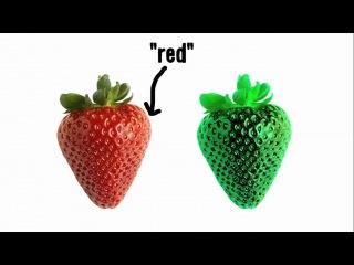 Похож ли ваш красный на мой красный?(Vsauce на русском)