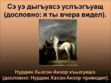 Адыгский (Черкесский) язык
