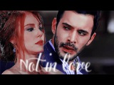 Omer & Defne ; Not in love.