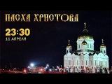 Пасха Христова Прямая Трансляция Богослужения Смотреть Онлайн из Храма Христа Спасителя Первый Канал