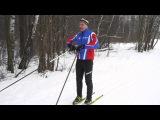 Беговые лыжи Урок 4 Обучение коньковому ходу