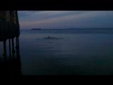 #Тамань заплыв #7 #мая в ледяной воде на #100% #трезвую #голову! Вечером на улице +10!!! Каайф!
