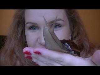 Ахатина - мои домашние питомцы обратите внимание на  кожу рук и лица хозяйки