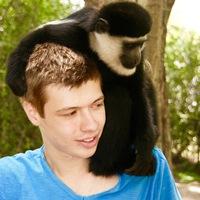 Дмитрий Чарнецкий фото