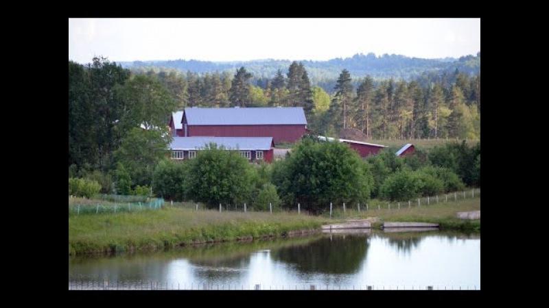 Экскурсия по фермерскому хозяйству Катумы