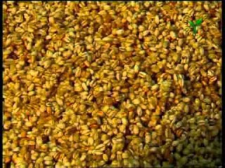 Халим (каша из пшеницы) - Halim tayyorlash sirlari
