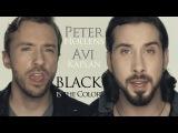 Black Is The Color Of My True Love's Hair - Peter Hollens &amp Avi Kaplan