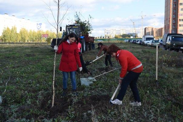 В Нижнекамске во время «Зеленой волны» высадят около 10 000 деревьев