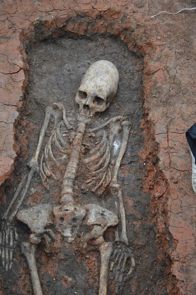 Секс в древнейшие времена использовали скелет рыбы