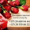 ДОСТАВКА ЦВЕТОВ/МИНСК/БЕЛАРУСЬ