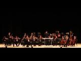 Венский филармонический Штраус оркестр - Йозеф Гайдн Прощальн ...