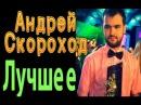 Андрей Скороход - лучшие выступления