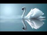 Красивая музыка БЕЗ СЛОВ для ДУШИ