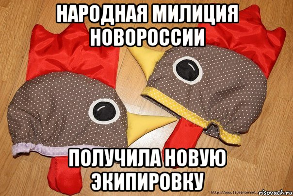 Катеринчук заявляет о массовых фактах подкупа избирателей в 13-м округе - Цензор.НЕТ 2965