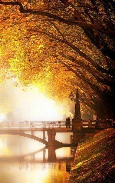 Отцвели цветы, падают листья, птицы молчат, лес пустеет и затихает.ОСЕНЬ. - Страница 6 JYcIbdPjwC8