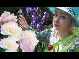 VLOG Ваша Юля - Какие цветы и помидоры растут у нас на даче