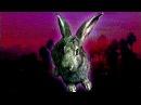 Василятина Кролик Из Беверли Хиллз