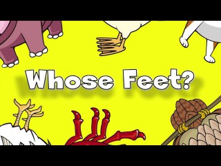 Whose Feet? | Learn Animals Song for Kids