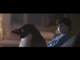 история о маленьком пингвине и его друге