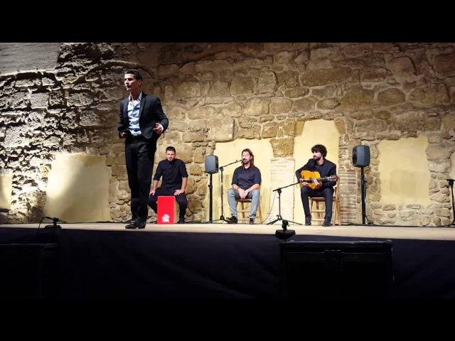 Rafael Campallo por alegrias (Carmona sept 2015) | Flamenco dance | フラメンコのダンサー