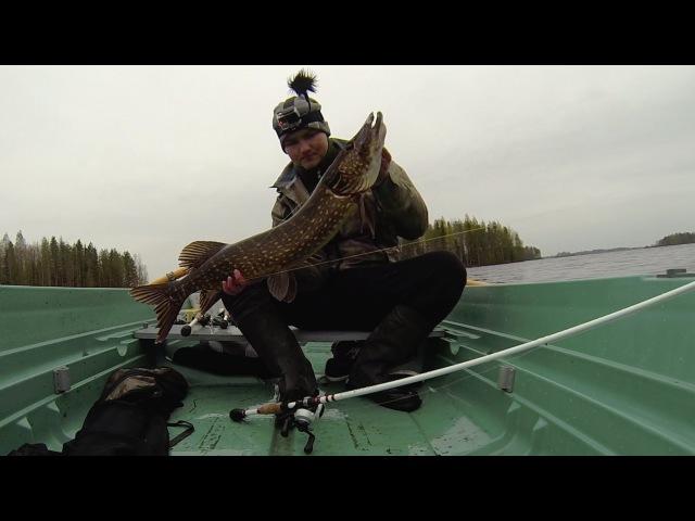 Hauen kalastusta järvellä loppukeväästä / Pike post spawn fishing on lake