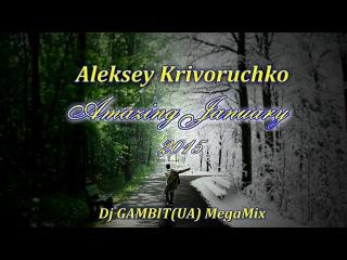 Aleksey Krivoruchko - Amazing January (Dj GAMBIT(UA) MegaMix 2015)