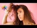 Маска против сухих и ломких волос от певицы Алёши Все буде добре Выпуск 697 от 02 11 15