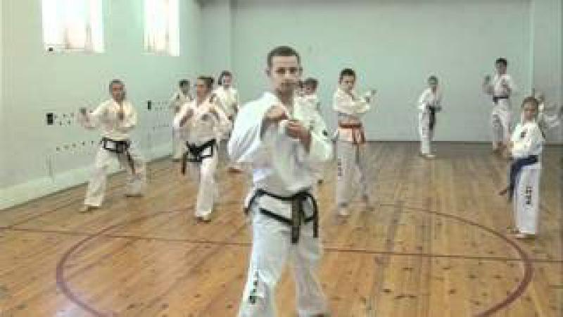 Уроки тхэквондо с Дмитрием Яковлевым! (2 урок)