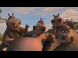 Мадагаскар Мото-Мото Песня часть 1 HD Full