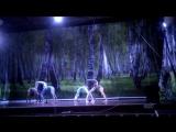 цирковая студия жар птица шестёрка