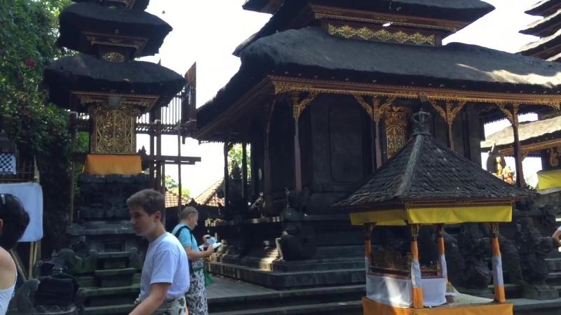 Храм летучих мышей. Бали