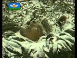 Герои России - Высота 776 бой 6 роты