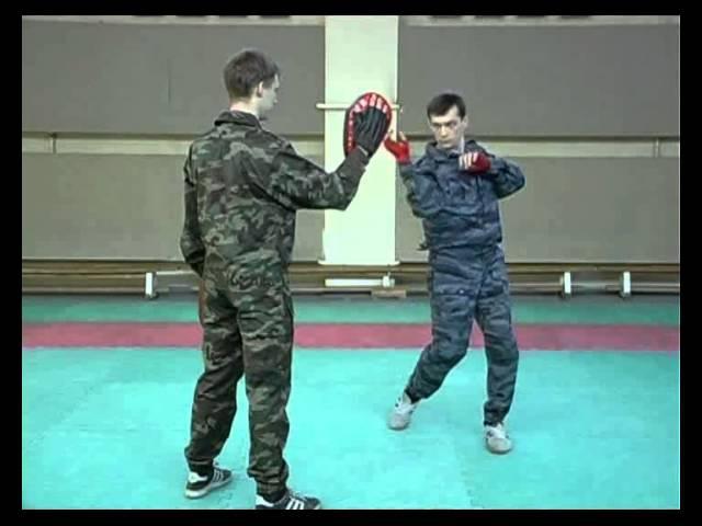 Русский стиль Система Воин Техника скоростного боя 2008 DVDRip