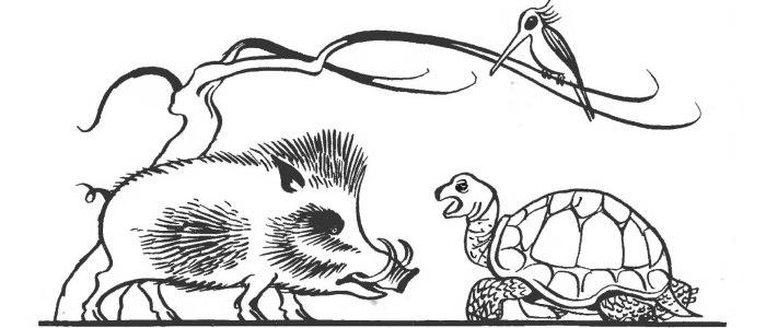 Черепаха й кабан