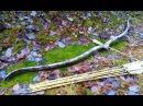 самодельный лук из трубы PVC cfvjltkmysq ker bp nhe,s pvc