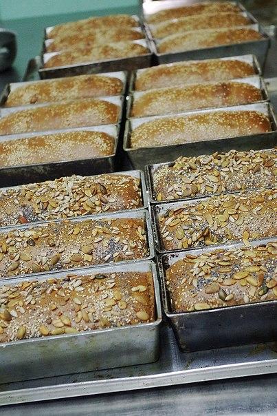 Как обхитрить (упростить) тесто и хлеб при замесе и выпечке