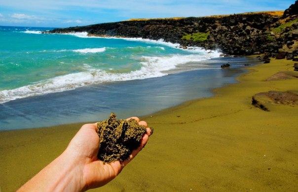 Зеленый пляж Папаколеа на Гавайских островах