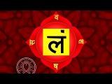 Binaural Beats Sleep Meditation Music: Root Chakra Activation & Healing, Relax Mind Body Music