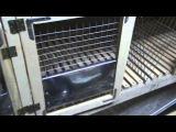клетка для кроликов в шеде часть 2
