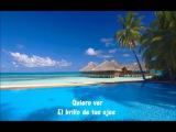 David Tavare - Summer Love (Lyrics)