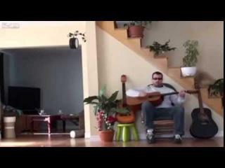 Месть хозяину с гитарой  Мужик обидел своего кота, а тот не растерялся и